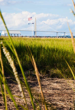 cooper: The pier and New Cooper River bridge as seen from the reeds of the surrounding marsh  Charleston, South Carolina