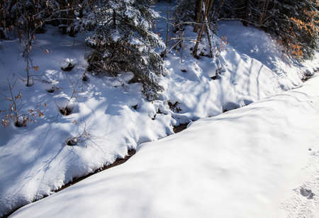 west virginia trees: A snow creek peaks through the fresh snow on a winter morning. Stock Photo