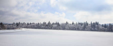 frozen lake: A reservior sits frozen with a fresh coating of snow in the early mornig light. Snowshoe, VW
