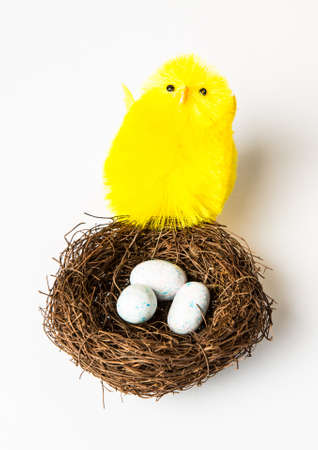 A large yellow chick with a nest full of candy eggs. Easter concept isolated on white. photo