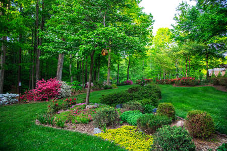 노스 캐롤라이나에있는 자연 경관이 아름다운 정원. Birhouses, 나무, 꽃과 관목.