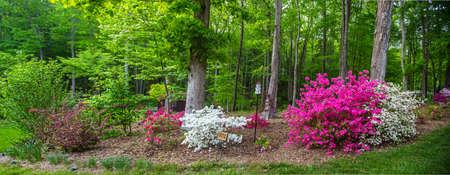 Ein schön angelegter Garten in North Carolina. Birhouses, Bäumen, Blumen und Sträuchern.