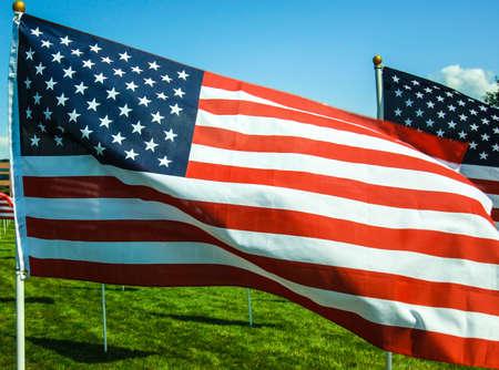 American Flags wave in the wind at a memorial in Utah  Fourth of July, Memorial Day, September 11th, Veteran Banco de Imagens