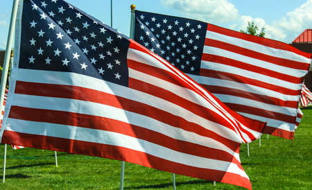 veteran's day: American Flags wave in the wind at a memorial in Utah  Fourth of July, Memorial Day, September 11th, Veteran Stock Photo