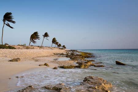 Der Korallenbruch, die den Strand macht gibt es eine rosa Färbung bei Sonnenuntergang. Bonaire, Niederländische Antillen.