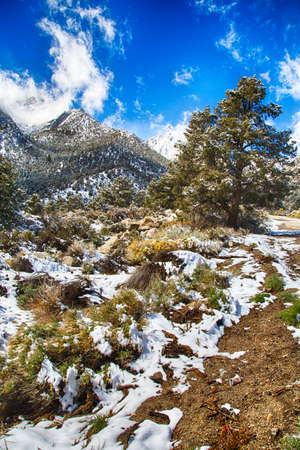 Spring snow in the Eastern Sierra Nevada Mountain Range. California, USA