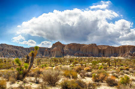 rock formation: Red Rock Canyon State Park features scenic desert cliffs, buttes and spectacular rock formations. The park is located where the southernmost tip of the Sierra Nevada converges with the El Paso Mountains.