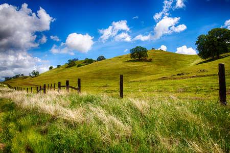 Grünen Hügeln von einer Ranch außerhalb von Fresno, Kalifornien auf hellen Frühlingstag.