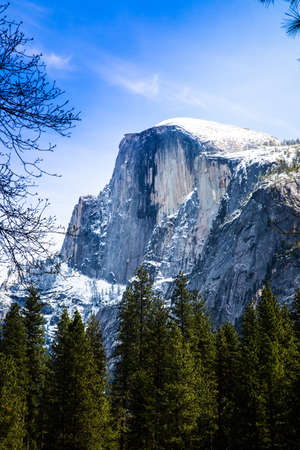 Half Dome Spitzen über die Baumwipfel wie aus dem Tal gesehen. Yosemite National Park, Kalifornien.