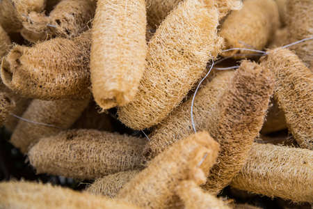 pore: Natural sponges in a street vendors cart in a market in Cartagena. Stock Photo