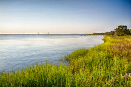 recreation area: The marshy shores of the Cape Fear River. Fort Fisher Air Force Recreation Area, North Carolina.