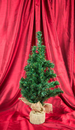A table top Christmas tree on a red backdrop. 版權商用圖片