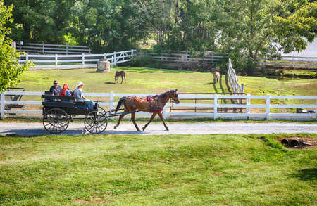 amish: Lancaster, Pennsylvania - September 10, 2016 - Amish men give tourists a ride in a traditional buggy on a historic farm in Amish Country Pennsylvania.