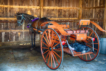 An Amish horse and buggy parked at a chain department store in Landcaster, Pennsylvannia.