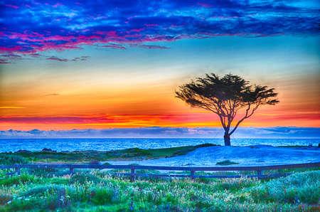 Pole golfowe na słynnej 17-milowej drodze w pobliżu Pebble Beach w Kalifornii.