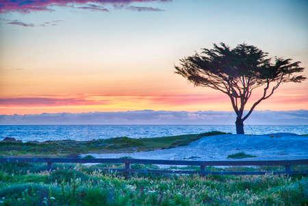 Golf course on the famous 17 mile drive near Pebble Beach, California. Stock Photo
