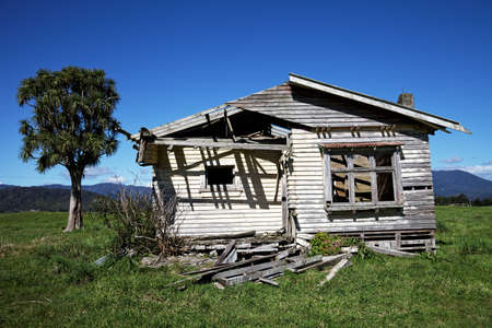 Derelict cottage ideal doer upper for the handyman, with a cabbage tree in the background