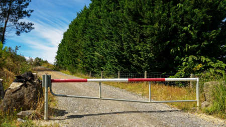 No entry, a locked gate on a forestry block in New Zealand. A pig carcass decorates adjacent rocks Stok Fotoğraf