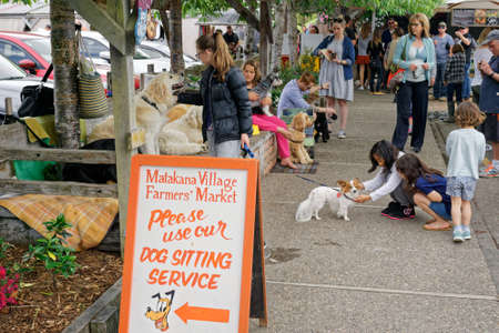 Matakana Farmers Market, MatakanaNew Zealand – November 4, 2017: Dog sitting service at the Matakana Village Farmers Market, Matakana, New Zealand. Editorial