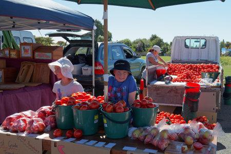 Motueka, Tasman/New Zealand - February 17, 2013: Motueka Sunday market stall with children selling buckets full of tomatoes.