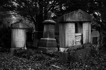Ulm, Germany - November 1, 2013  Old jewish graves and tombstones in the main cemetery  Hauptfriedhof  on November 1, 2013 in Ulm, Germany