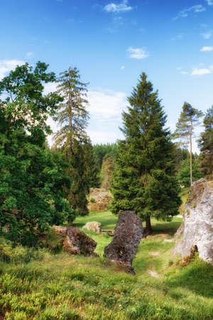 바위와 Wental (Wen Valley)에서 나무 풍경 Bartholomä, 바 덴 -Wrttemberg, 독일 근처 Swabian Alb에서 Felsenmeer. 스톡 콘텐츠 - 80425724