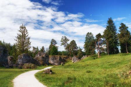 바위와 Wental (Wen Valley)에서 나무 풍경 Bartholomä, 바 덴 -Wrttemberg, 독일 근처 Swabian Alb에서 Felsenmeer. 스톡 콘텐츠 - 80425723