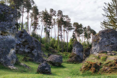 바위와 Wental (Wen Valley)에서 나무 풍경 Bartholomä, 바 덴 -Wrttemberg, 독일 근처 Swabian Alb에서 Felsenmeer. 스톡 콘텐츠 - 80425733