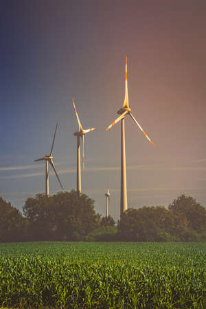 Silhouette of wind turbines on the fields in the light of the rising sun.