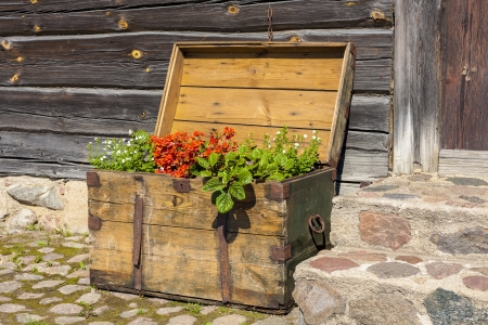 Old wooden treasure chest filled with blooming flowers, standing in front of an old wooden building. photo