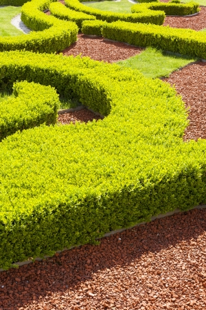 trickling: Baroque boxwood hedges against trickling brick gravel paths  Public park