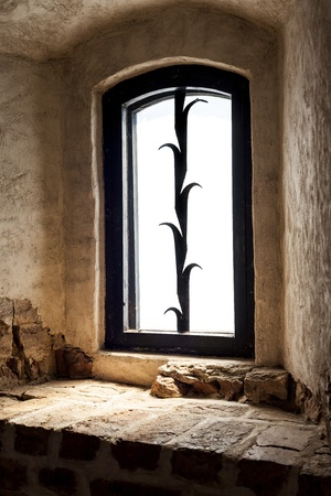 Old window in a brick wall, metal decorated with security windows  Stock Photo - 20693194
