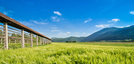Hayrack standing in a field with mountains  photo