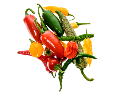 Different variety of hot peppers - a bunch of chilies, isolated on white. Hot pepper Macedonian Fringed, Sarit Gat, Red Cherry, Cayenne, Serrano, Habanero Orange, Jalapeno, Fatalii Yellow, Trinidad Scorpion Moruga and regular chili. Stock Photo