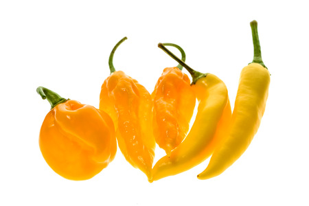 gat: Different variety of yellow hot peppers - a bunch of chilies, isolated on white. Hot pepper Sarit Gat, Habanero Orange and Fatalii Yellow Stock Photo