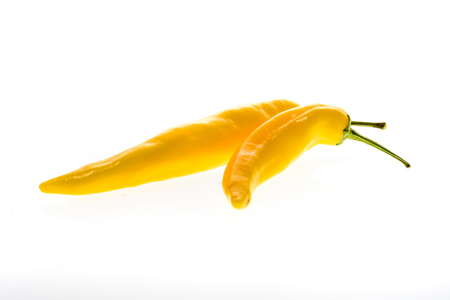 Organic Yellow hot chili peppers Sarit Gat with green stem. Studio image Isolated  on white background.
