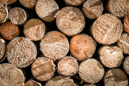 Pile or stack of natural fire wood logs texture background. Abstract photo of natural wooden logs texture.