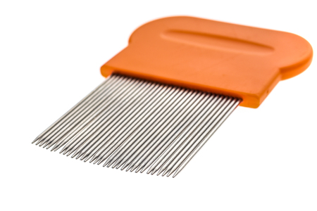 Lice comb for home removing lice treatment isolated on white. Metal tooth comb for lice and nits removing procedure. Stock Photo