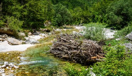 Idyllic mountain river in Lepena valley, Soca - Bovec Slovenia. Piled up wooden dam resembling beaver dam on river Lepenca. Beautiful landscape scene with forest, mountains and river in Slovenia, Europe.