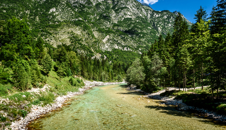 Idyllic mountain river in Lepena valley, Soca - Bovec Slovenia. Beautiful vivid turquoise river stream rapids of river Lepenca. Beautiful landscape scene with forest, mountains and river in Slovenia, Europe.