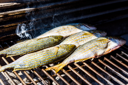 Grilling fish on a bbq barbecue grill over hot coal. Preparing and roasting Salema porgy, Sarpa salpa or sea bream fish on a barbecue in a bbq fireplace in Croatia. Stock Photo