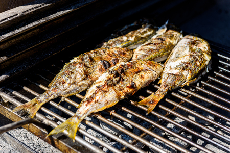 Grilling fish on a bbq barbecue grill over hot coal. Preparing and roasting Salema porgy, Sarpa salpa or sea bream fish on a barbecue in a bbq fireplace in Croatia. Stock fotó