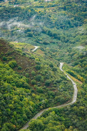 View of asphalt road, forest and vineyards along river Sil. Curvy, asphalt road leading through forest and vineyards along river Sil, Canyon de Rio Sil, Galicia, Spain.