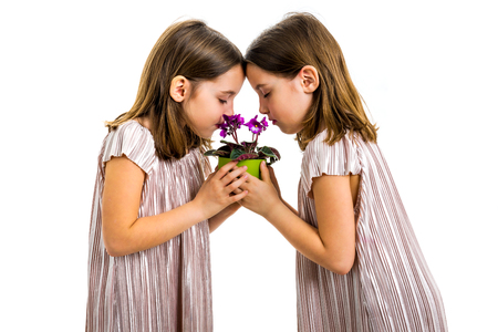 Identical twin girl are smelling viola flower green pot. Little girls children are mourning with with closed eyes. Concept of grief losing loved ones. Profile view, studio, isolated white background