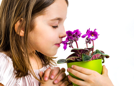 Little girl smelling viola flowers in green pot. Child is smelling flowers given as a gift or present. Profile view, studio shot, isolated on white background. 版權商用圖片