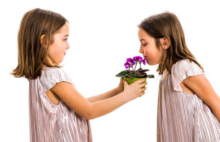 Identical twin girl is smelling flower - gift from sister. Little girl child is giving a gift or present of flowers to her sister. Profile view, studio shot, isolated on white background. 版權商用圖片