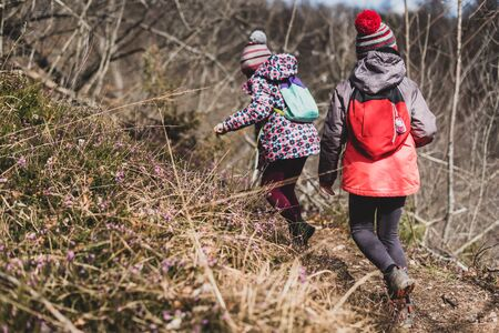 Children hiking in the mountains or woods on family trip. Active family, parents and children mountaineering in the nature. Kids are walking in woods trail road in cold winter time. Banco de Imagens