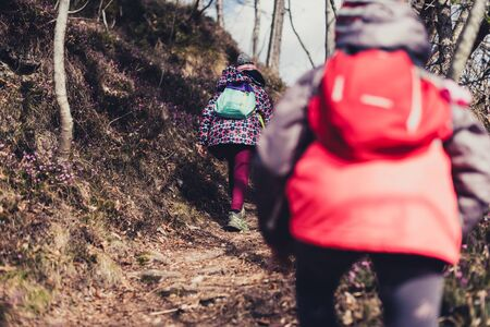 Children hiking in the mountains or woods on family trip. Active family, parents and children mountaineering in the nature. Kids are walking in woods trail road in cold winter time. Imagens