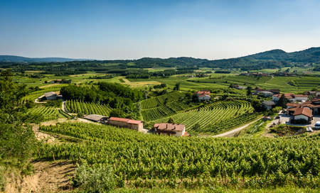 View of famous wine region Goriska Brda hills in Slovenia. Panoramic photo of villages of Gorica Hills with vineyardsand grapevinecovering hills. Agricultural wine region of Slovenia.