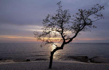 Sunset in the Mediterranean Stock Photo - 16615728